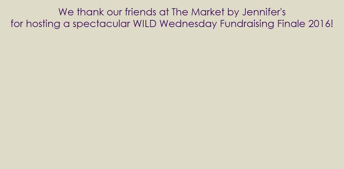 We thank our friends at The Market by Jennifer's for hosting a spectacular WILD Wednesday Fundraising Finale 2016!
